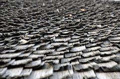 Άνευ ραφής σύσταση της ξύλινης στέγης βοτσάλων Στοκ Εικόνα