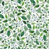 Άνευ ραφής σύσταση της πρασινάδας watercolor Φρέσκοι κλάδοι φυλλώματος και δέντρων άνοιξη Στοκ εικόνες με δικαίωμα ελεύθερης χρήσης