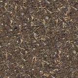 Άνευ ραφής σύσταση του εδάφους με τα ξηρά χορτάρια. Στοκ φωτογραφίες με δικαίωμα ελεύθερης χρήσης
