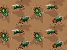 Άνευ ραφής ταπετσαρία κινούμενων σχεδίων μυγών εντόμων Στοκ Εικόνες