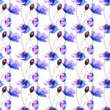 Άνευ ραφής ταπετσαρία με τα λουλούδια παπαρουνών Στοκ Φωτογραφία