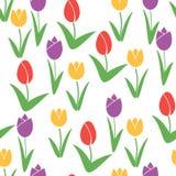 άνευ ραφής τουλίπες προτύπων Διανυσματικό υπόβαθρο λουλουδιών στοκ εικόνα