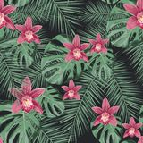Άνευ ραφής τροπικό διανυσματικό σχέδιο με τα λουλούδια ορχιδεών και τα εξωτικά φύλλα φοινικών διανυσματική απεικόνιση