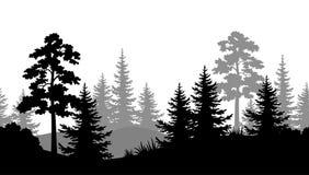 Άνευ ραφής υπόβαθρο, θερινές δασικές σκιαγραφίες Στοκ Εικόνες