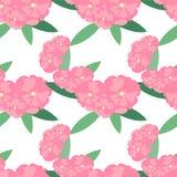 Άνευ ραφής υπόβαθρο λουλουδιών Oleander Ροζ, λουλούδια στο λευκό Διανυσματική απεικόνιση αποθεμάτων στοιχείων σχεδίου διανυσματική απεικόνιση
