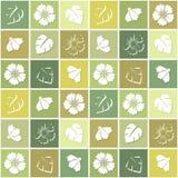 Άνευ ραφής υπόβαθρο με τα λουλούδια στα χρωματισμένα τετράγωνα Στοκ Εικόνα