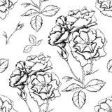 Άνευ ραφής υπόβαθρο με τα λουλούδια ύφους σκίτσων Στοκ φωτογραφία με δικαίωμα ελεύθερης χρήσης