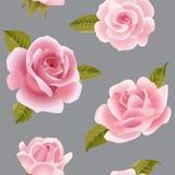 Άνευ ραφής υπόβαθρο με τα ρόδινα τριαντάφυλλα Στοκ Εικόνες