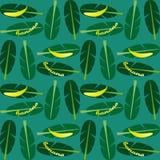 Άνευ ραφής υπόβαθρο με τα φύλλα μπανανών και φοινικών μπανανών Μπανάνα κειμένων διανυσματική απεικόνιση