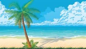 Άνευ ραφής υπόβαθρο με την ακτή, ωκεανός, φοίνικες διανυσματική απεικόνιση