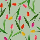 Άνευ ραφής υπόβαθρο με τις χρωματισμένες τουλίπες επίσης corel σύρετε το διάνυσμα απεικόνισης Στοκ Φωτογραφία