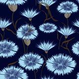 Άνευ ραφής-υπόβαθρο--μπλε-Cornflowers απεικόνιση αποθεμάτων