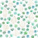 Άνευ ραφής υπόβαθρο σχεδίων Watercolor με τα succulents, τον κάκτο και τα terrariums στοκ εικόνα με δικαίωμα ελεύθερης χρήσης