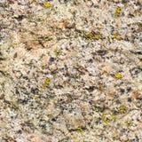Άνευ ραφής υπόβαθρο της παλαιάς φωτογραφίας σύστασης τοίχων πετρών Ζωηρόχρωμος παλαιός συγκεκριμένος τοίχος πετρών Στοκ Φωτογραφία