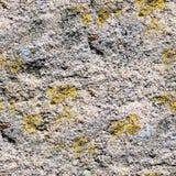 Άνευ ραφής υπόβαθρο της παλαιάς φωτογραφίας σύστασης τοίχων πετρών Ζωηρόχρωμος παλαιός συγκεκριμένος τοίχος πετρών Στοκ φωτογραφία με δικαίωμα ελεύθερης χρήσης