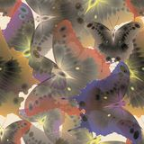 Άνευ ραφής υπόβαθρο των χρωματισμένων πολύχρωμων πεταλούδων απεικόνιση αποθεμάτων