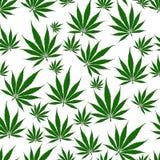 Άνευ ραφής υπόβαθρο φύλλων μαριχουάνα Στοκ Εικόνες