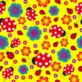 Άνευ ραφής υπόβαθρο ladybug Στοκ Εικόνες