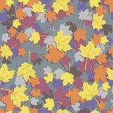 Άνευ ραφής φθινόπωρο φυλλώματος Στοκ φωτογραφία με δικαίωμα ελεύθερης χρήσης