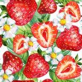 άνευ ραφής φράουλα προτύπ&omega Στοκ εικόνες με δικαίωμα ελεύθερης χρήσης