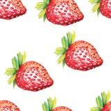 άνευ ραφής φράουλα προτύπ&omega απεικόνιση αποθεμάτων