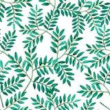 Άνευ ραφής φύλλα watercolor σχεδίων πράσινα απεικόνιση αποθεμάτων