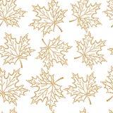 Άνευ ραφής φύλλο σφενδάμου σχεδίων Στοκ φωτογραφία με δικαίωμα ελεύθερης χρήσης