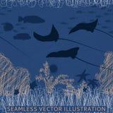 Άνευ ραφής ψάρια ακτίνων Στοκ Φωτογραφία