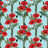 Άνευ ραφής backgro με την κόκκινη παπαρούνα λουλουδιών Στοκ εικόνα με δικαίωμα ελεύθερης χρήσης