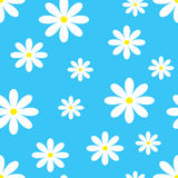 Άνευ ραφής chamomile σχέδιο επίσης corel σύρετε το διάνυσμα απεικόνισης Στοκ Εικόνες