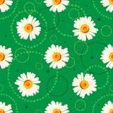 Άνευ ραφής chamomile σχέδιο στο πράσινο υπόβαθρο με τα doodles Στοκ Φωτογραφία