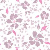 Άνευ ραφής floral ανασκόπηση Στοκ Εικόνα