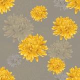 Άνευ ραφής floral γκρίζο σχέδιο με τα χρυσά χρυσάνθεμα Στοκ Εικόνες