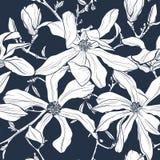 Άνευ ραφής floral διανυσματικό σχέδιο με το άνθος magnolia Τρύγος τυποποιημένος διανυσματική απεικόνιση