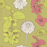 Άνευ ραφής floral εκλεκτής ποιότητας ιαπωνικό πράσινος-ρόδινο σχέδιο άνοιξη απεικόνιση αποθεμάτων