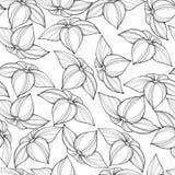 Άνευ ραφής floral πρότυπο Στοκ φωτογραφίες με δικαίωμα ελεύθερης χρήσης