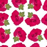 Άνευ ραφής floral σχέδιο με τα τριαντάφυλλα και τα φύλλα στο διάνυσμα Στοκ Φωτογραφία