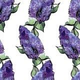 Άνευ ραφής floral σχέδιο watercolor των πασχαλιών Στοκ φωτογραφία με δικαίωμα ελεύθερης χρήσης