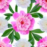 Άνευ ραφής floral σχέδιο με τα ρόδινα peonies Στοκ Φωτογραφία