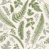 Άνευ ραφής floral σχέδιο με τα χορτάρια και τα φύλλα Στοκ Εικόνες