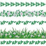 Άνευ ραφής floral σχέδιο Στοκ Φωτογραφία