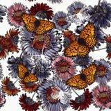 Άνευ ραφής floral υπόβαθρο με τα λουλούδια και τις πεταλούδες μαργαριτών Στοκ Φωτογραφία