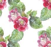 Άνευ ραφής Floral υπόβαθρο Watercolor Στοκ Φωτογραφία
