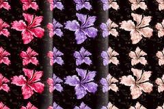 Άνευ ραφής hibiscus ανθίζουν το ημι αφηρημένο ύφος Στοκ φωτογραφία με δικαίωμα ελεύθερης χρήσης