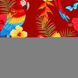 Άνευ ραφής macaw και λουλούδια Στοκ Εικόνα