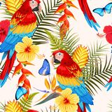 Άνευ ραφής macaw και λουλούδια Στοκ Φωτογραφίες