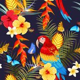 Άνευ ραφής macaw και λουλούδια Στοκ εικόνα με δικαίωμα ελεύθερης χρήσης