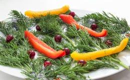 Άνηθος με το πιπέρι κουδουνιών σε ένα πιάτο Στοκ φωτογραφία με δικαίωμα ελεύθερης χρήσης