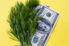 Άνηθος πρασινάδων και εκατό δολάρια σε κίτρινο Στοκ φωτογραφία με δικαίωμα ελεύθερης χρήσης