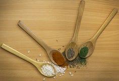 Άνηθος, oregano, κόκκινο πιπέρι, pitinac στα ξύλινα κουτάλια Στοκ φωτογραφίες με δικαίωμα ελεύθερης χρήσης